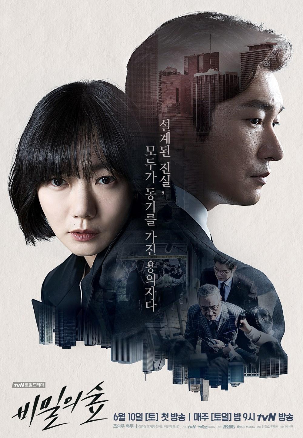 Secret Forest (Stranger / Forest of Secrets / Bimilui Soop / 비밀의 숲) (2017)
